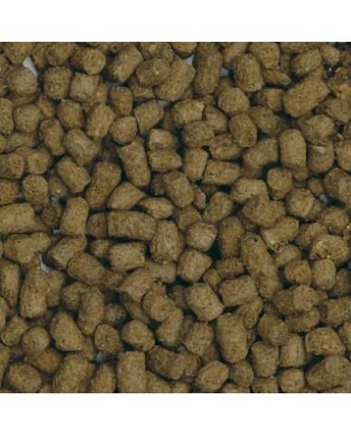FLUVAL | Bug BiteS granulés pour poissons rouges - moyen/grand / 100G