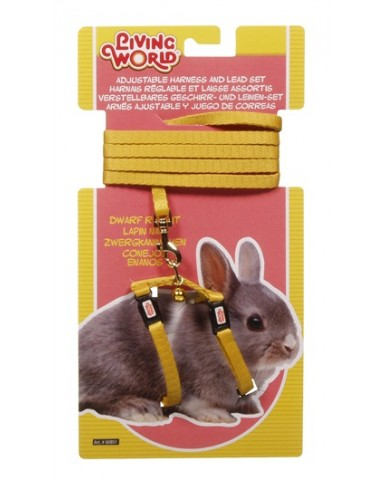 living world | Laisse & harnais ajustable pour lapin nain